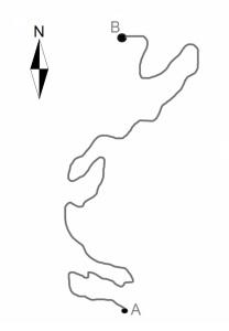CaminoCorrecto